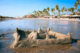 Goa Group Tour Packages, Book Group Holiday and Vacation Packages for Goa at Yatra.com   Holidays Information-India and World   Scoop.it