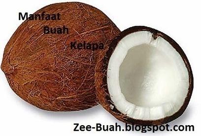 Manfaat Buah Kelapa untuk Kesehatan Tubuh   Situs Buahan   Situs Buahan   Scoop.it