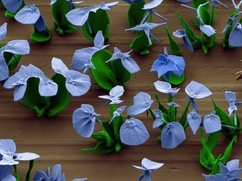"Pictures: Nano ""Flowers"" Created in Lab - National Geographic News - National Geographic 