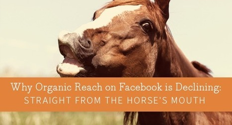 Why Organic Reach on Facebook is Declining: Straight from the Horse's Mouth | Social Media | Scoop.it