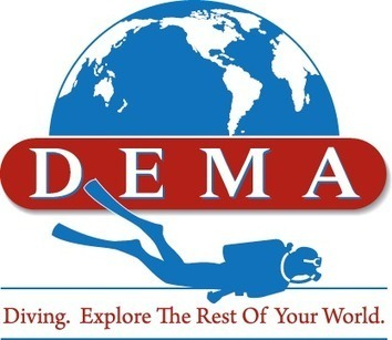 DEMA Urges the Dive Industry to Comment on a Proposed Ban on Spearfishing on #Scuba in #Florida | DiverSync | Scoop.it
