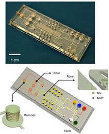 Microfluidic NMR System Detects Microvesicles to Spot Cancer | NanoBiomedical Diagnostics | Scoop.it