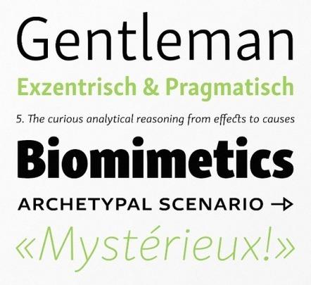 The Best Typefaces of 2014   • Créativité • Pensée •   Scoop.it