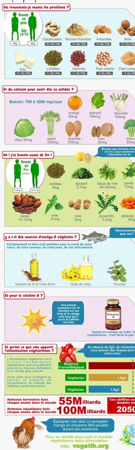 : association végétarienne Belgique Wallonie Bruxelles | Alimentation - santé - environnement | Scoop.it