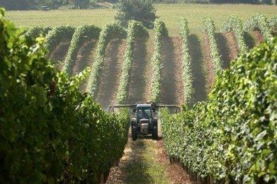 Un niveau alarmant d'exposition aux pesticides en France | Agriculture en Dordogne | Scoop.it