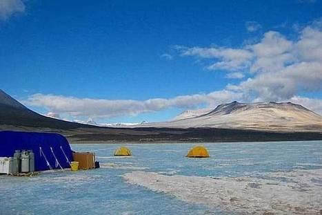 Hallan vida de más de 100,000 años en profundidades de La Antártida | Ciencia y tecnología | Scoop.it