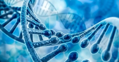 Chinese Scientists Will Perform First CRISPR Human Gene Editing Trial In August | Chair et Métal - L'Humanité augmentée | Scoop.it