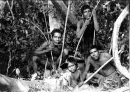 La génétique au service de l'histoire : les Amérindiens aux ancêtres polynésiens | Rhit Genealogie | Scoop.it
