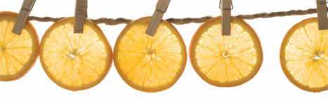 Citrus Industry on a mission | Year 8 Economics and Business: Exporting to Asia | Scoop.it