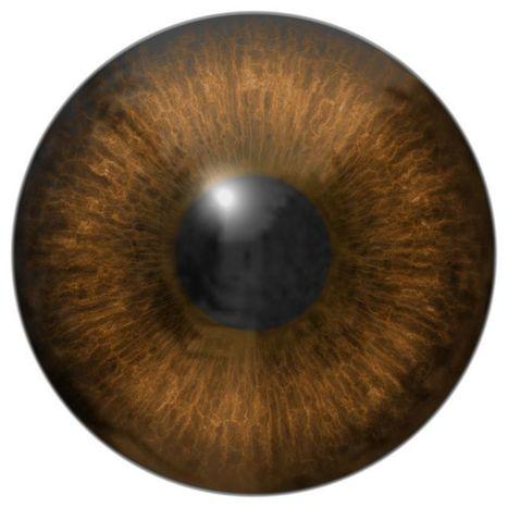 Don't It Make Your Brown Eyes Booze | Criminal Defense Attorney North Carolina | Scoop.it