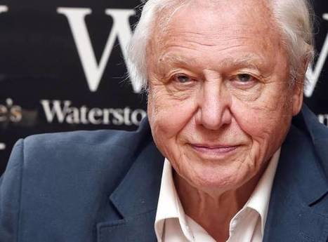 David Attenborough calls on Chinese president to end ivory trade and halt extinction of the African elephant | GarryRogers Biosphere News | Scoop.it