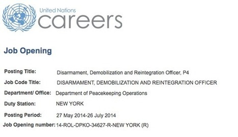 Gun Grab Alert! - New York DISARMAMENT OFFICER Position Posted On United Nations Careers | News | Scoop.it