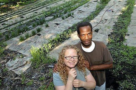 Urban farmers living off the (city) land - Pioneer Press | Chico Aquaponics | Scoop.it