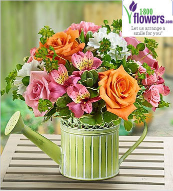 1800flowers coupon codes | Mobile Application | Scoop.it