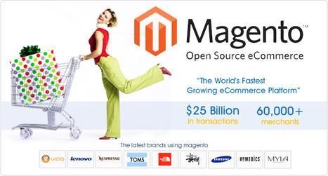 Hire Magento Developers in India | Magento Development Company in India - Beta Soft Technology | Website Design & Development Company | Scoop.it