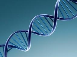 ADN para el almacenamiento de datos, alcanzan un 99,9% de exactitud   Saber mas en tecnología, compartir es la via   Scoop.it