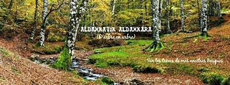 Aldaxkatik Aldaxkara: Une histoire de jumeaux et de gueule cassée | Généalogie | Scoop.it