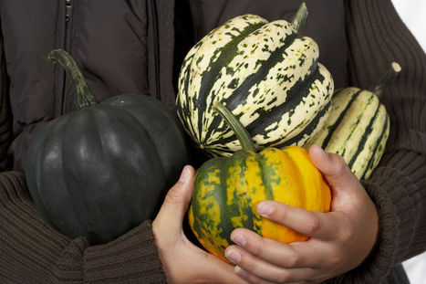 Baked Acorn Squash Recipe | The Miracle of Fall | Scoop.it