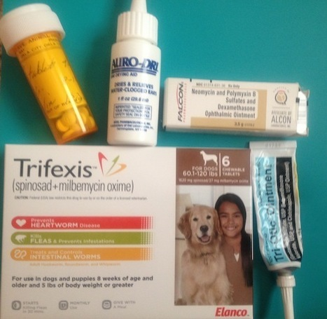 Why Use An Online Pet Pharmacy?   Compounding Pharmacy   Scoop.it