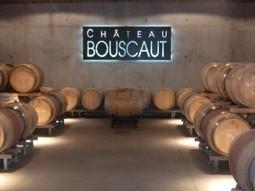 Le Château Bouscaut se tourne vers l'oenotourisme | Oenotourisme33 | Scoop.it