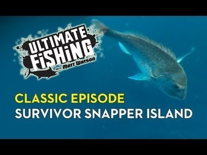 ULTIMATE FISHING - Land based snapper fishing   Share This   Scoop.it