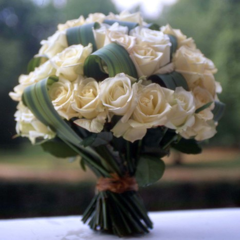 Snow in Summer from London Florists Flowers24Hours | Same Day Flowers Delivery in London | Scoop.it