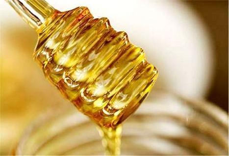 La miel, la mejor fuente natural de energía | Camino al Culturismo | Ayuda en el gym. | Musculación | Scoop.it