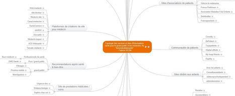 MAJ décembre 2013 de mon Mapping des services et sites d'informations pour le grand public et les médecins | le monde de la e-santé | Scoop.it