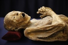 German Boy Finds Mummy in Grandmother's Attic: Family Thought It Phony, Turns Out Scary | Egyptology and Archaeology | Scoop.it