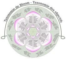 Carte heuristique des pistes d'utilisation pédagogique de Prezi selon la taxonomie de Bloom | éducation et pratiques pédagogiques | Scoop.it