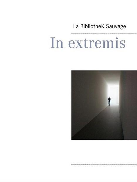 [BKS#2] Publication | La BibliotheK Sauvage | Scoop.it