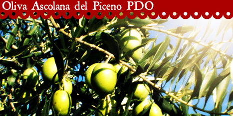 Oliva Tenera Ascolana del Piceno PDO | Le Marche and Food | Scoop.it