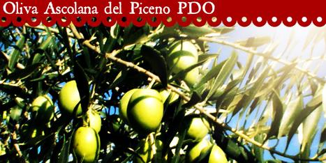 Oliva Tenera Ascolana del Piceno PDO | Le Marche and Food | Scoop.it