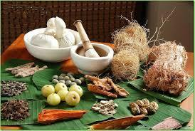 An Introduction to Ayurvedic Treatment | Ayurveda Tips | Scoop.it