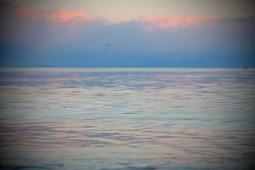 Water of an ancient sea identified under Chesapeake Bay | EarthSky.org | Ancient Origins of Science | Scoop.it