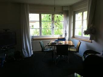 Beautiful 2 Bedroom Apt. Available from 1st July - Zurich Kreis 11 | switzerland | Scoop.it