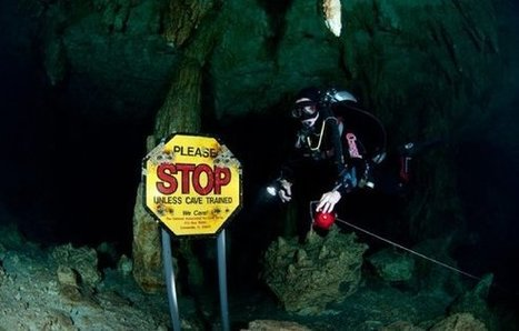 Five Reasons Why Cenote Diving Is Not For You | Cave Diving | Scoop.it