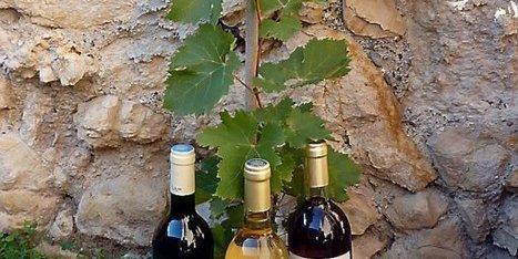 L'histoire de la vigne et du vin depuis l'antiquité - Midi Libre | Net-plus-ultra | Scoop.it