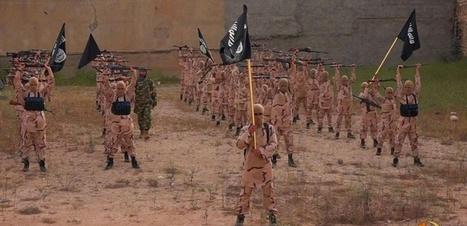 Trois questions pour comprendre les enjeux de la guerre contre l'Etat islamique | 694028 | Scoop.it