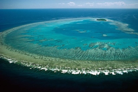 There's a Huge Geological Structure Hiding Behind the Great Barrier Reef | LibertyE Global Renaissance | Scoop.it