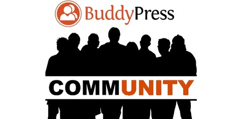 20 Best Buddypress Themes for your Community Portal | Reviews it | Scoop.it