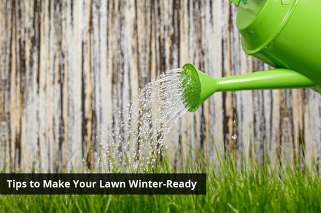 4 Tips to Make Your Lawn Winter-Ready | Turfrain | Turfrain | Scoop.it
