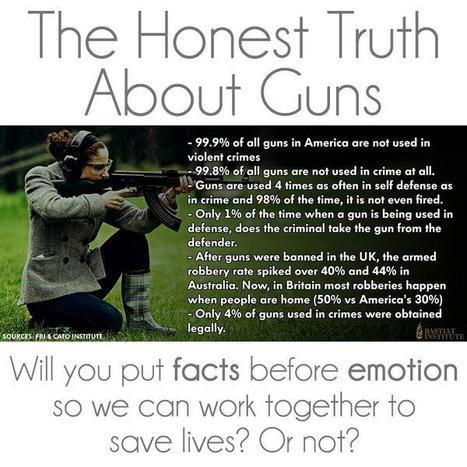 Honest Truth About Guns | Criminal Justice in America | Scoop.it