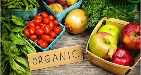 HEALTHY LIVING THROUGH ORGANIC FOODS | Healthy Living - WhatsUp Markets | Scoop.it