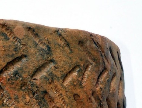 Bronze Age burial urn returns home | Archaeology News | Scoop.it