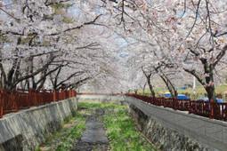Достопримечательности Кореи, Сеула, 112 фотографий | Korea | Scoop.it