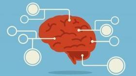 eHealth, premio europeo alla tecnologia senese BrainControl - La Stampa (Blog) | Pensieri...in progress | Scoop.it