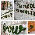 Moss graffiti   DIY avec 2 mains gauches   Scoop.it