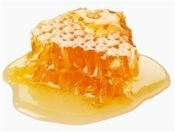 L'exportation du miel vietnamien autorisée sur le marché européen - Vietnam+ | Abeilles, intoxications et informations | Scoop.it