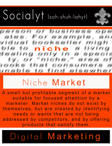 Niche Market | Socialyt Digital Marketing | Scoop.it